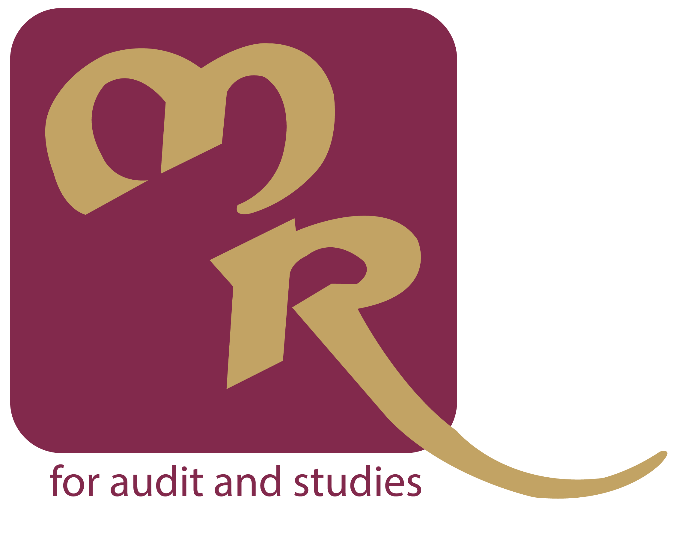 Muadh rayan for audit. Evidence clipart financial statement