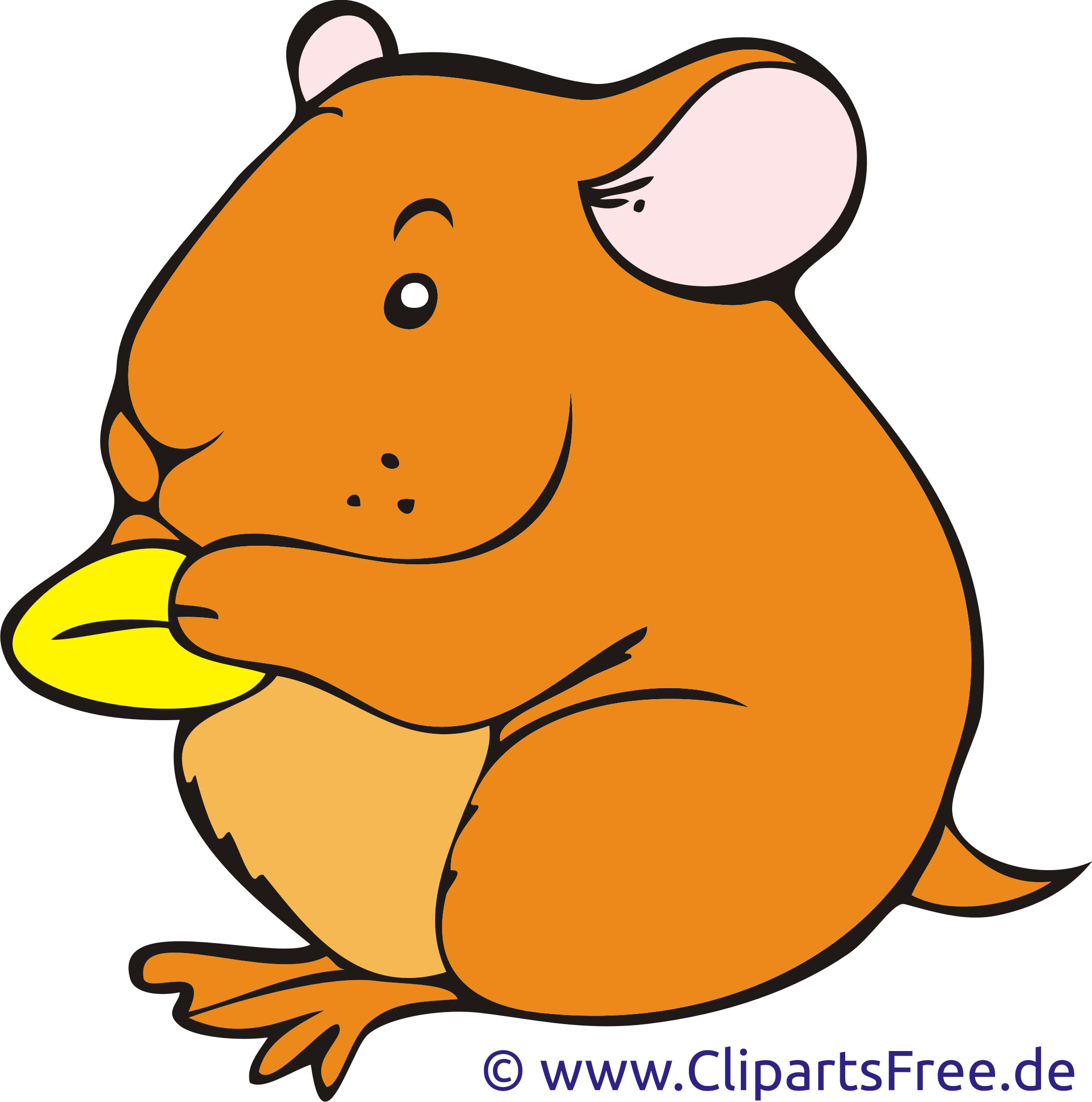 Hamster collection svg and. Exercise clipart cute
