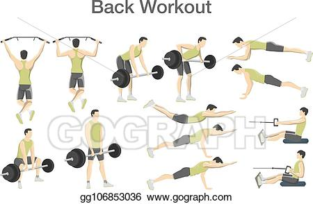 Exercise clipart fitness training. Vector stock back workout