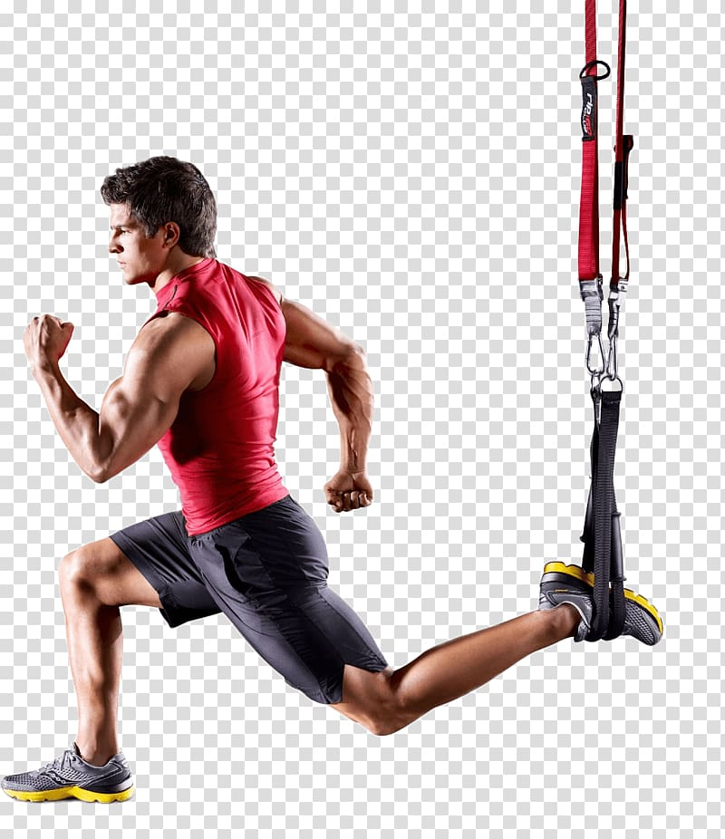 Exercise clipart sport training. Physical fitness suspension centre