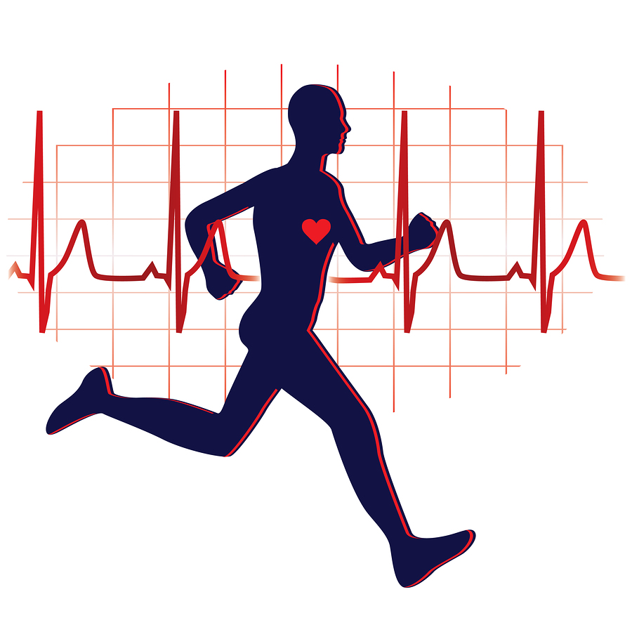 Exercising clipart cardiovascular exercise.  best cardio workout