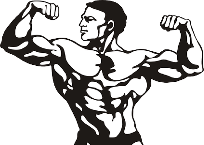 Exercising clipart muscle. How to grow your