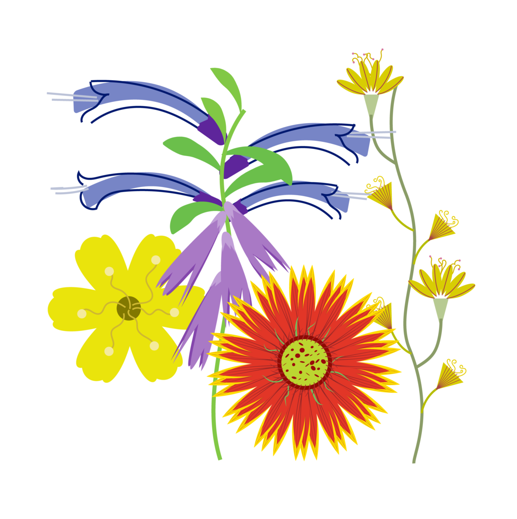 Respect your mother nature. Exercising clipart stamen