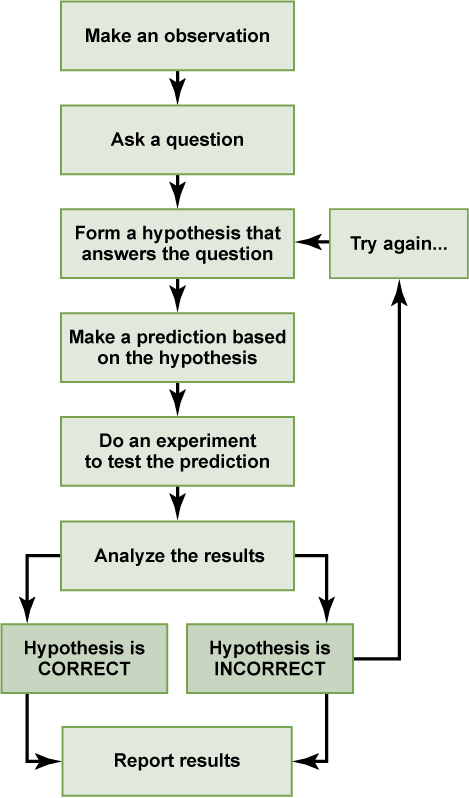 Hypothesis clipart inductive reasoning. Biology the chemistry of