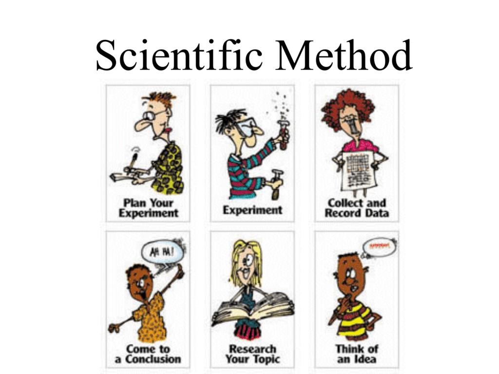 Experiment clipart science conclusion. Scientific method