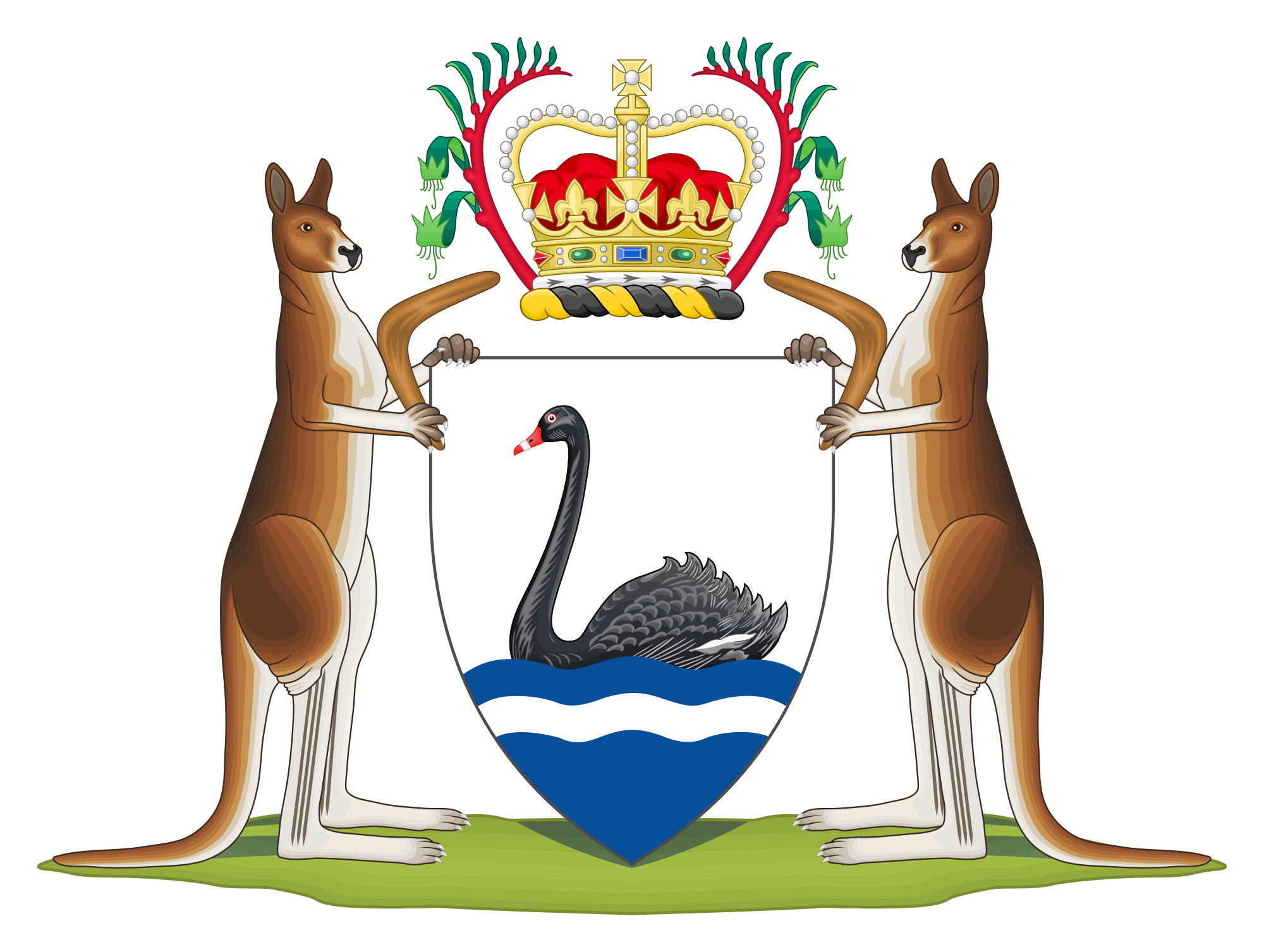 Coat of arms western. Kangaroo clipart mother kangaroo