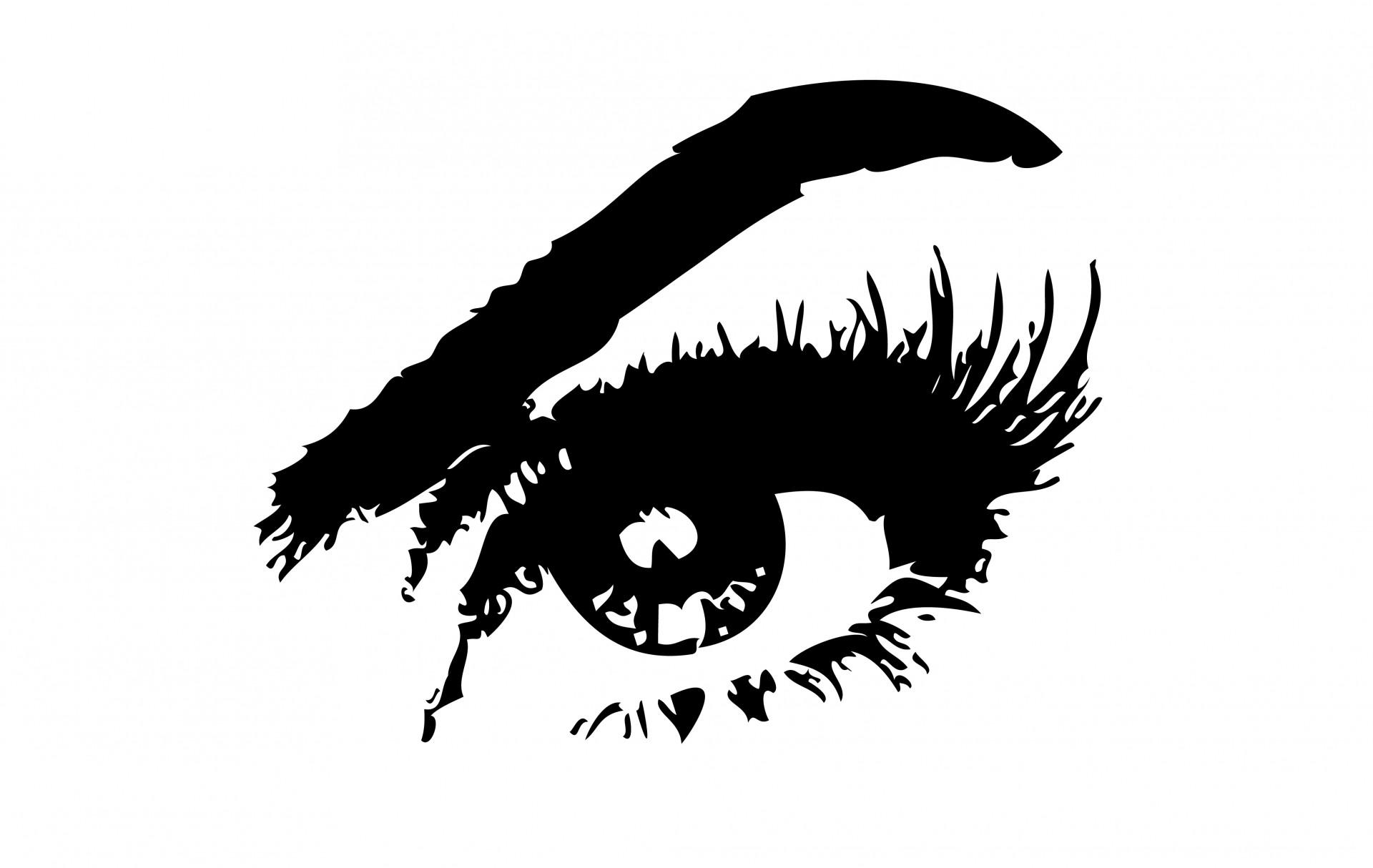 Eyebrow clipart. Eye free stock photo