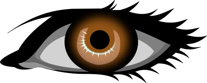 Eyeball clipart 3 eye.  brown eyes clipartlook