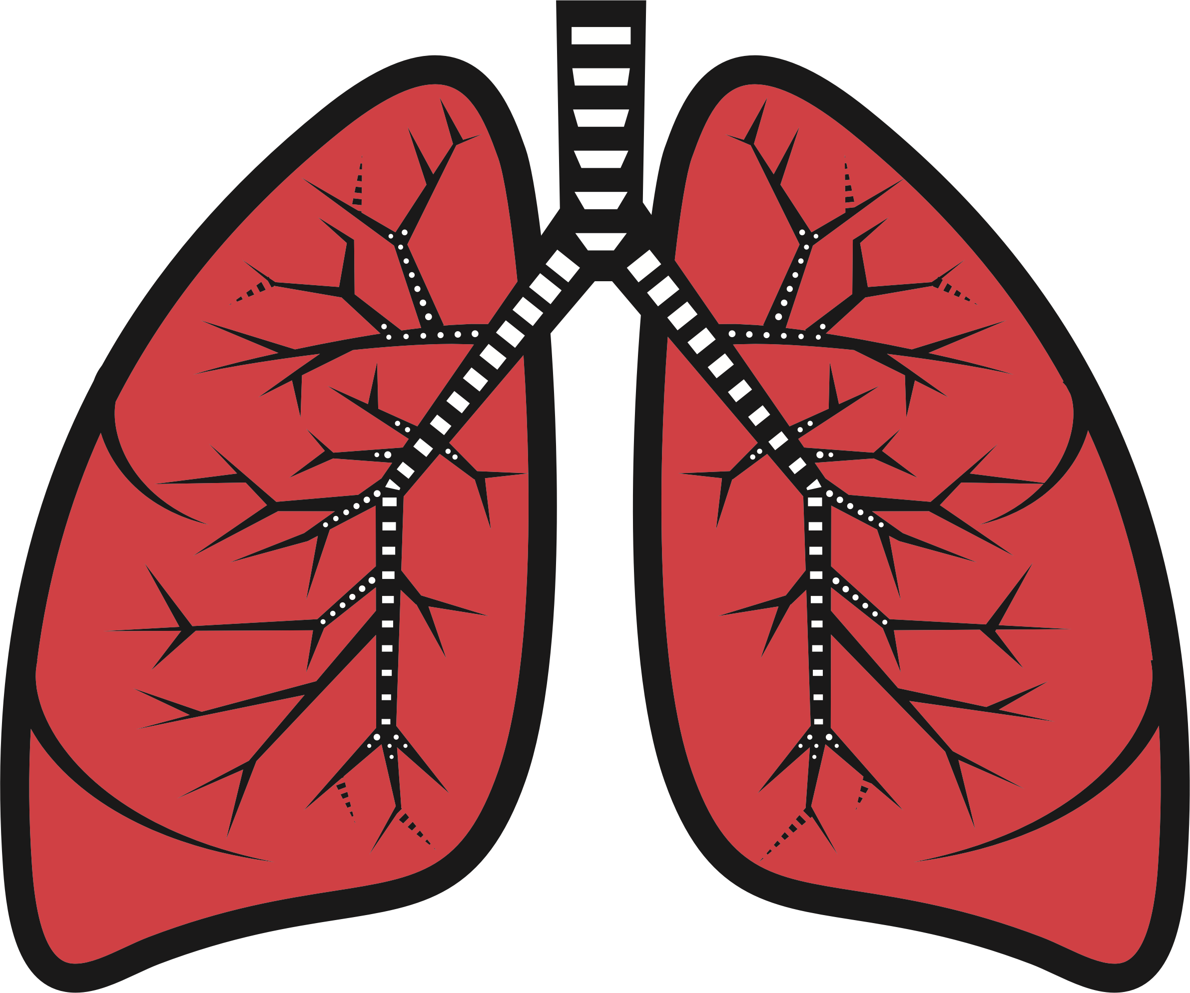 Sad lung