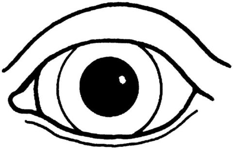 Eyeball clipart craft. Pictures free printable an