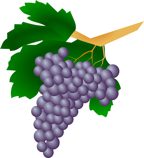 Incredible health benefits of. Grapes clipart fruit individual