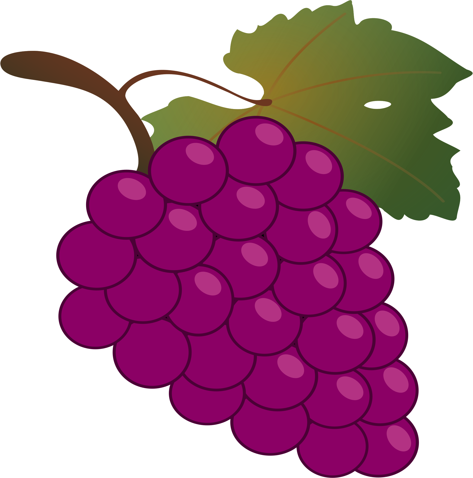 grape clipart wine grape