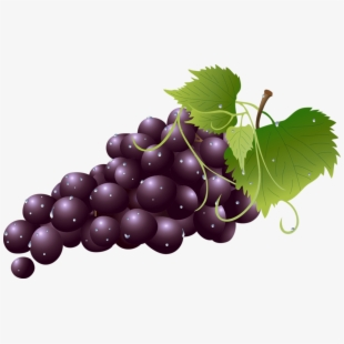 Free grapes pokemon cliparts. Grape clipart eye