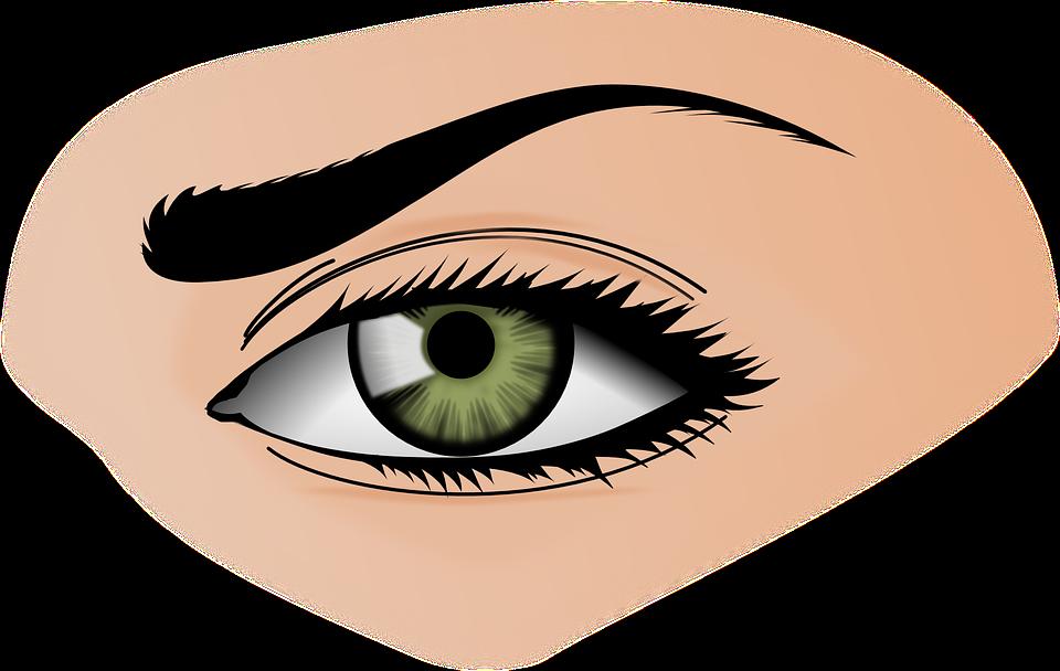 Eye png images free. Eyeballs clipart transparent background