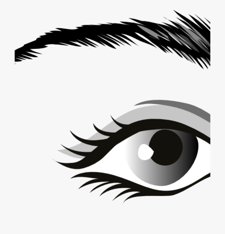 Eyebrow clipart part eye. Eyes black and white