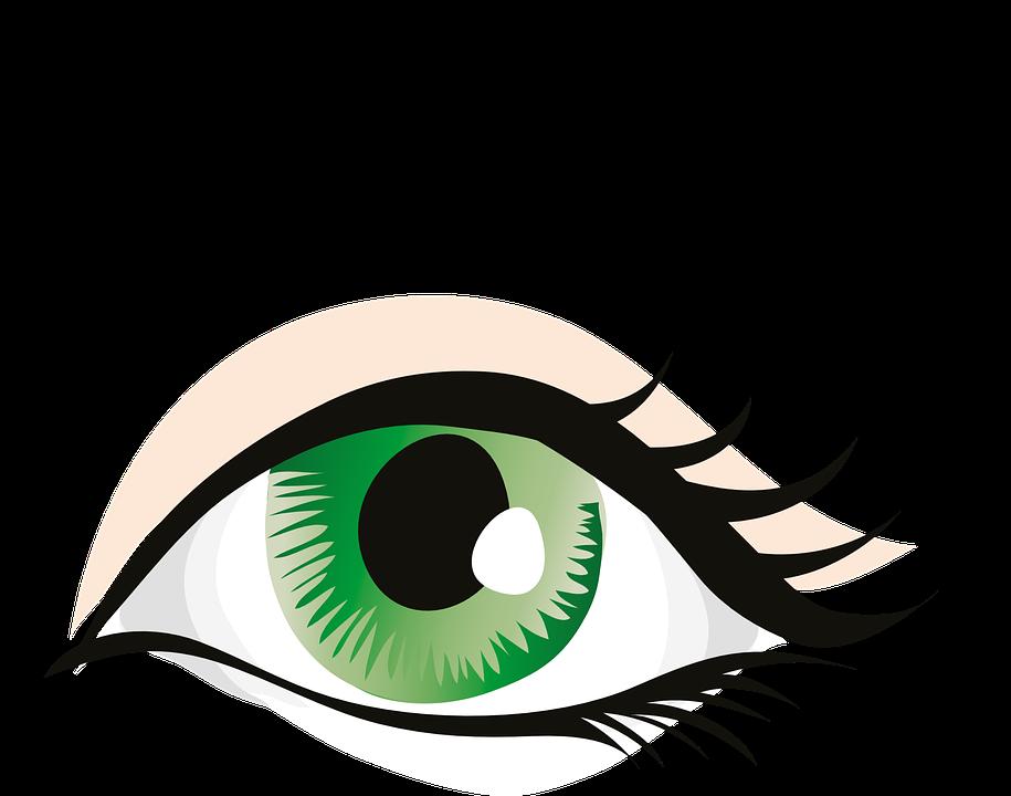 Green eyes human eye. Eyeball clipart clip art