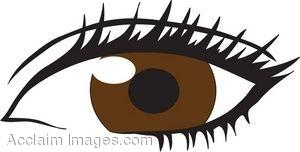 Brown free download best. Eyeball clipart dark eyes