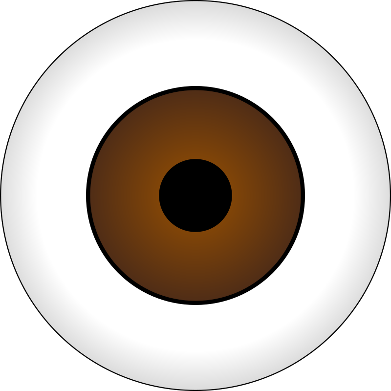 Olhos castanhos brown eye. Eyeball clipart dark eyes