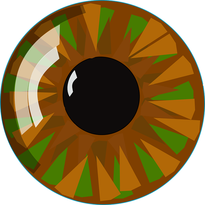 Collection of vision png. Eyes clipart sense