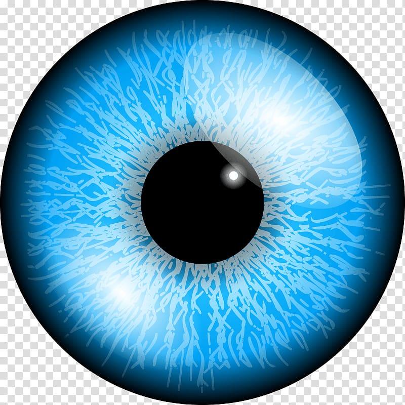 Eyeball clipart eye colour. Color blue transparent background