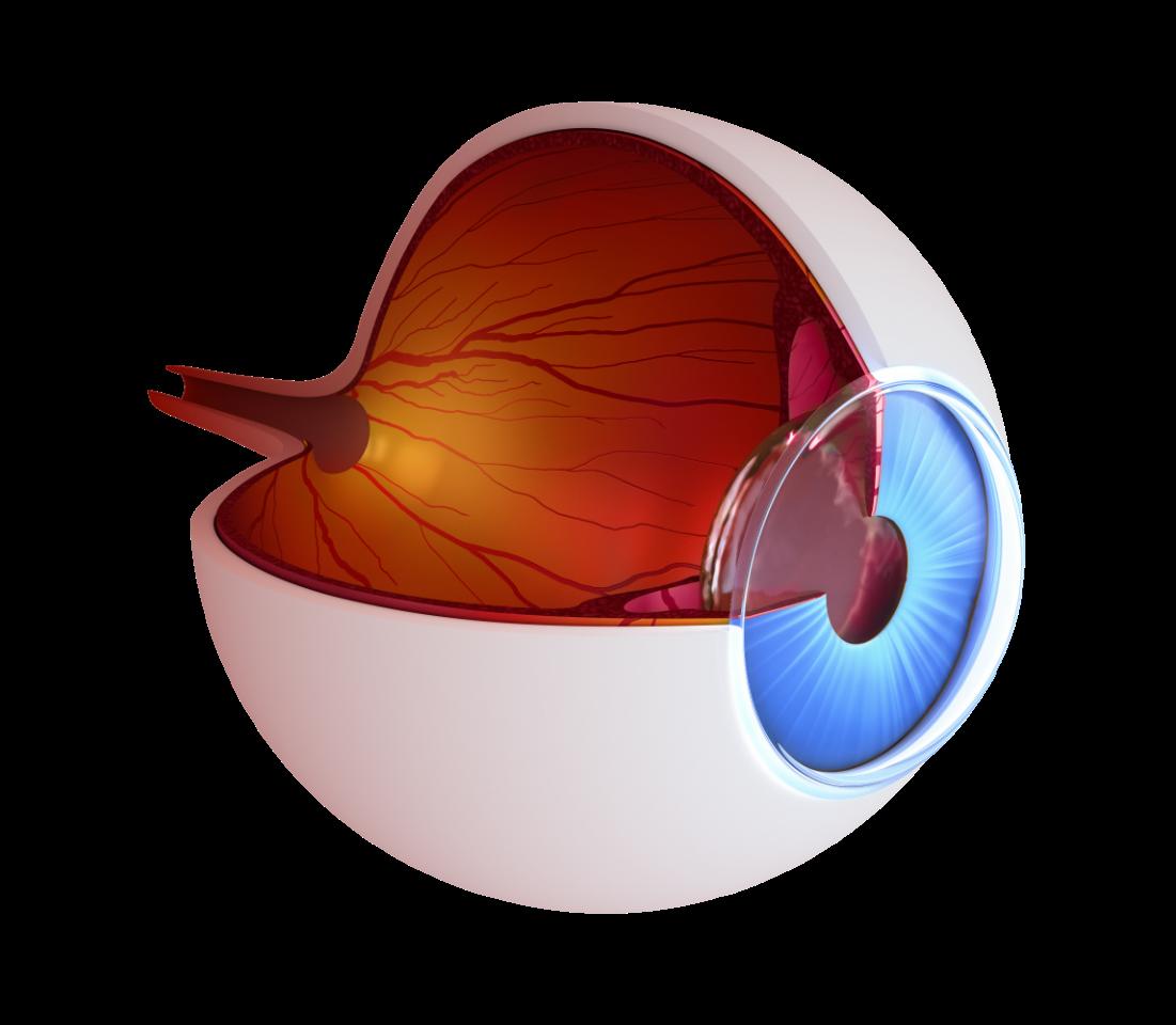 Visusnano a drug eluting. Eyeball clipart eye surgery