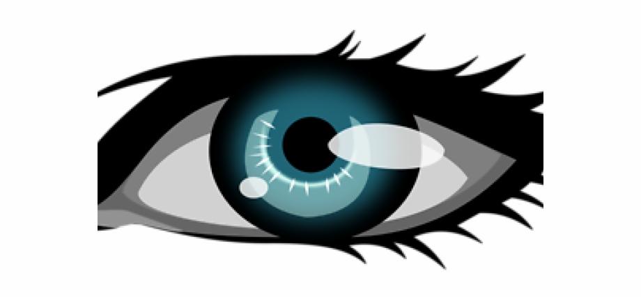 Eyeball clipart male eye. Brown eyes guy blue