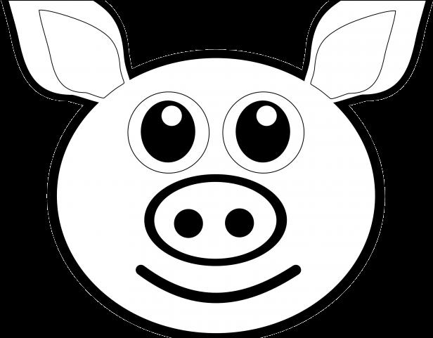 Eyeball clipart pig. Drawing a head transparent