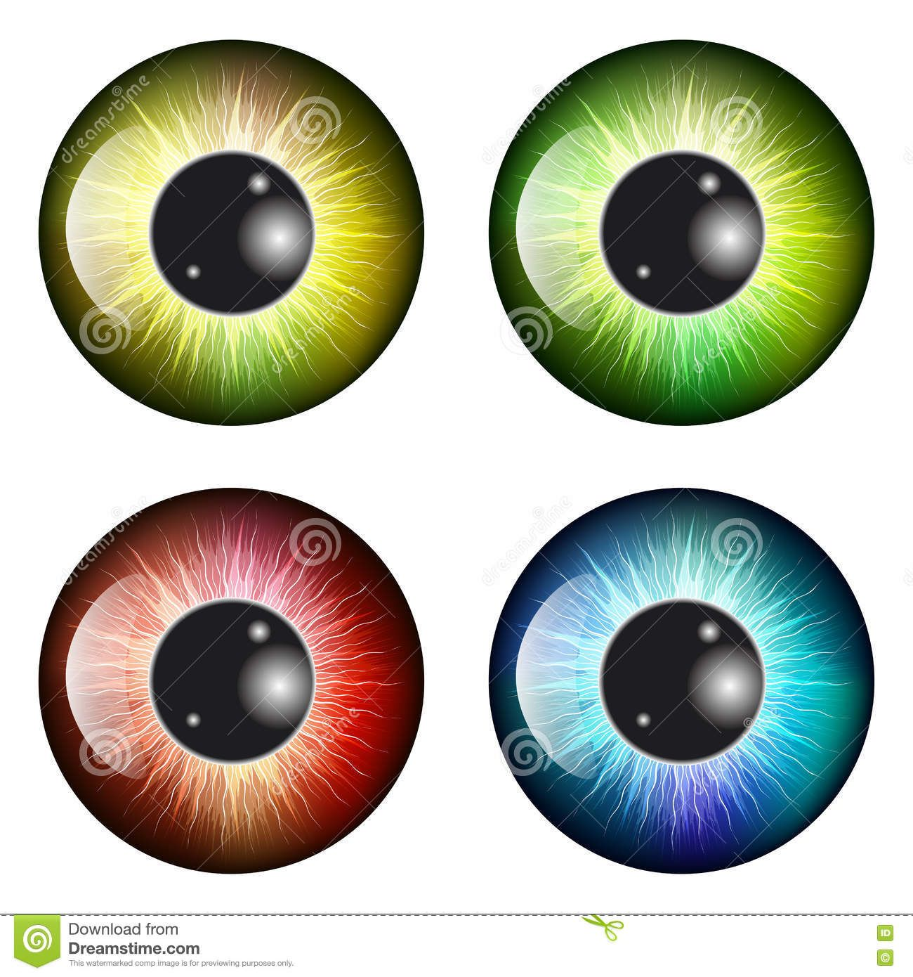 Eyeball clipart pupil eye. Iris vector symbol icon