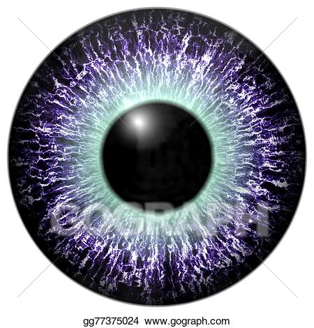 Eyeball clipart purple. Drawing detail of eye