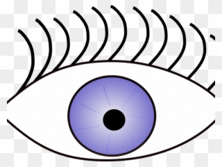 eyeball clipart sense sight