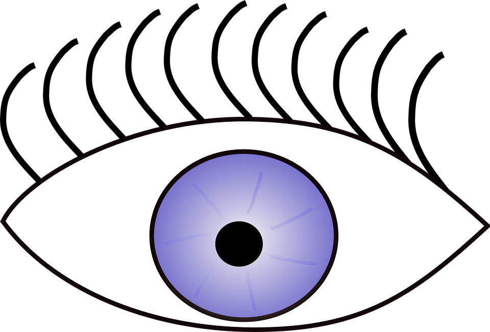 Eyeball clipart sense sight. Of vision eye the