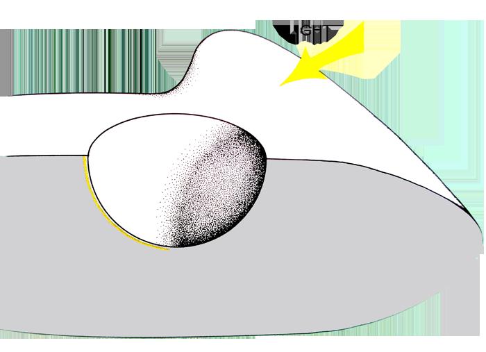 Eyeballs clipart sensory impairment. Vision the light receptors