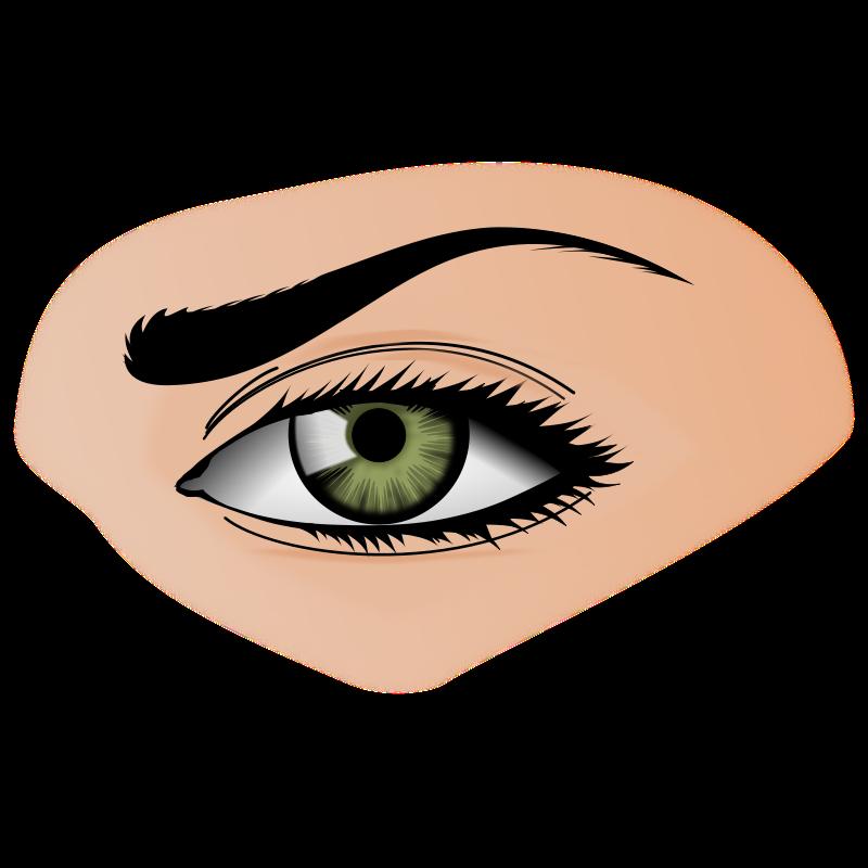 collection of sense. Nose clipart sensory organ