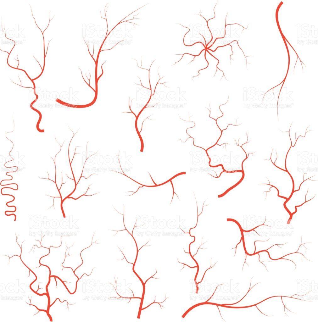 Human red eye veins. Eyeball clipart vein