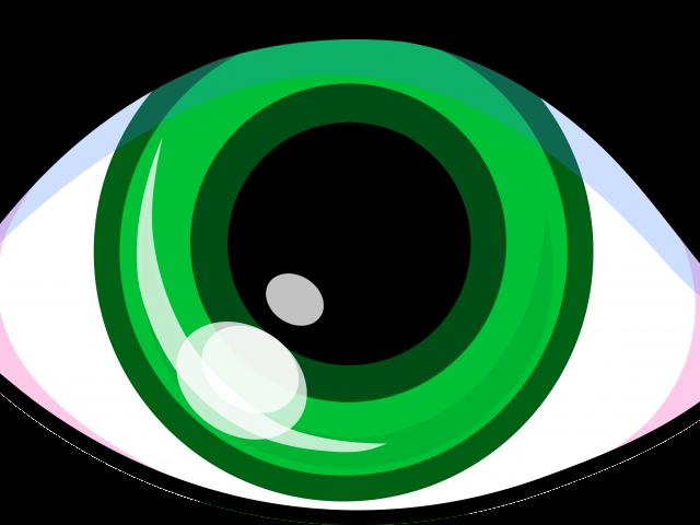 Picture of bulls eye. Eyeball clipart visual