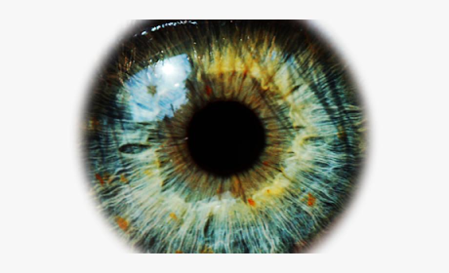 Green eyes lens png. Eyeballs clipart eye forward