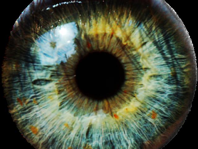 Eyeballs clipart eye forward. Green eyes lens png