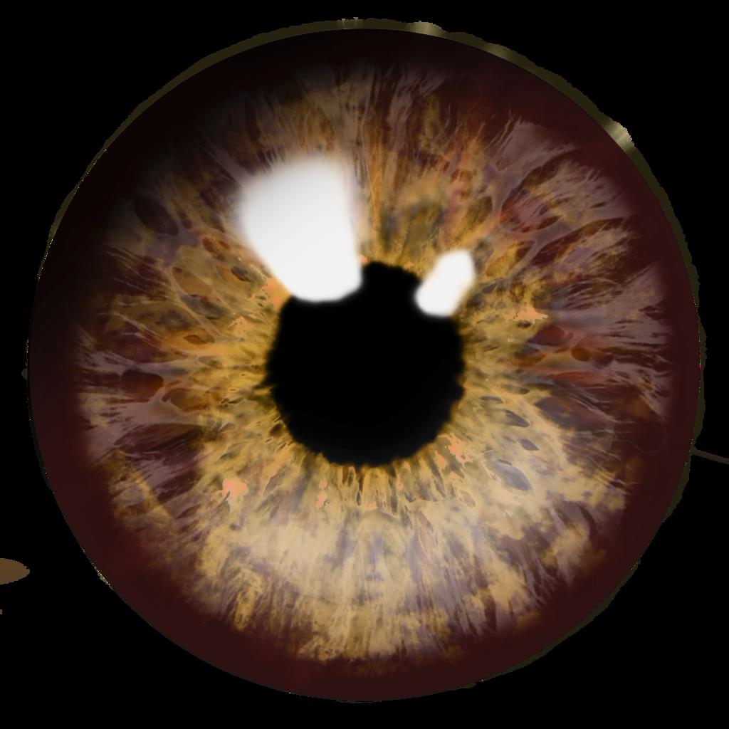 Eyeballs clipart eye optical. Eyes png image purepng