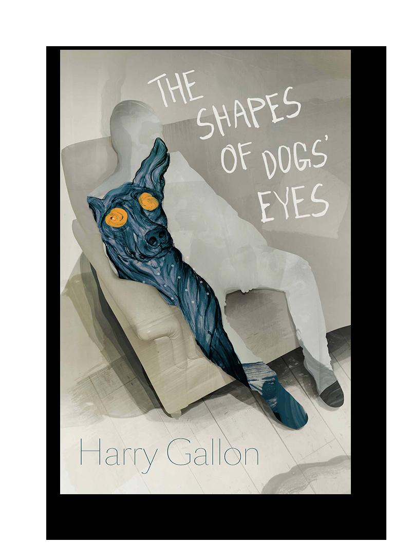 Eyeballs clipart eye shape. The shapes of dogs