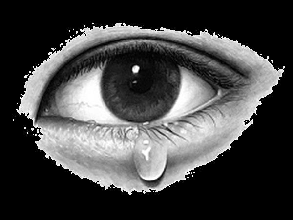 Eyeballs Clipart Eye Sketch Picture 2670003 Eyeballs Clipart Eye Sketch