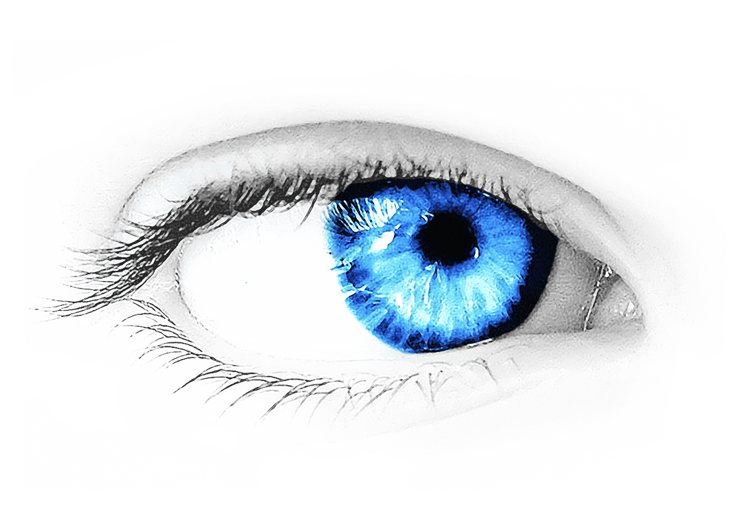 Eyes png in high. Eyebrow clipart transparent background