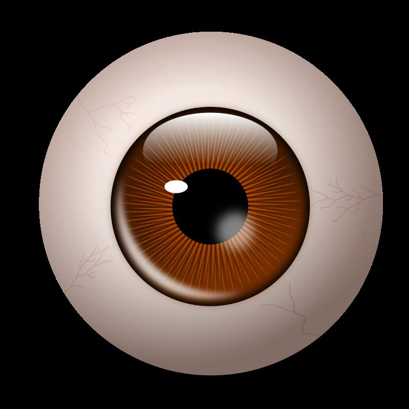 Different eye free on. Eyeballs clipart eyeball line