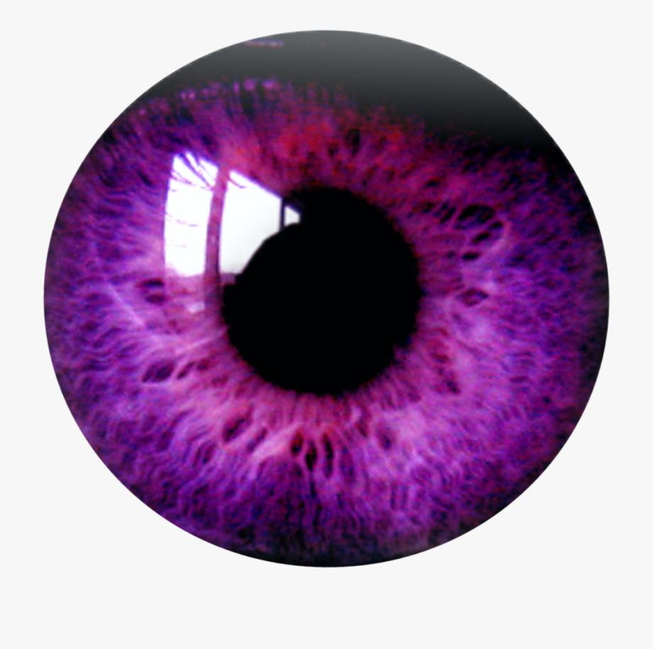 Royalty free download . Eyelash clipart purple eye