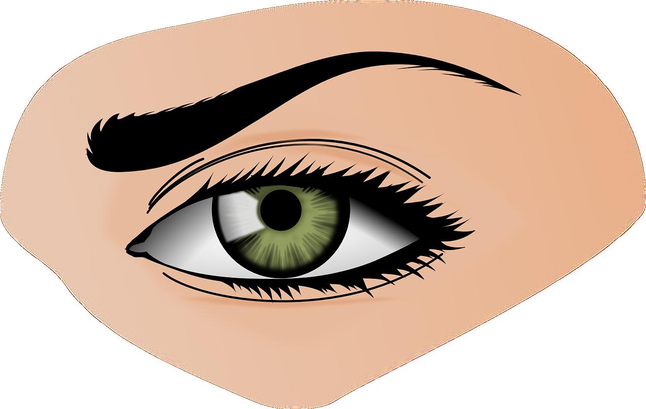 Eyeballs clipart sight senses. How to take care