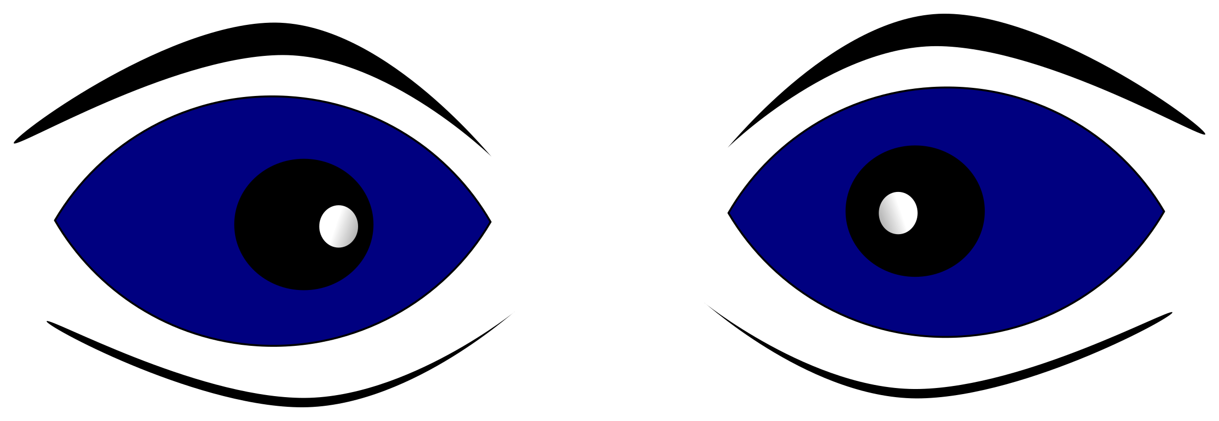 Eyes on the nose. Eyebrow clipart blue eye
