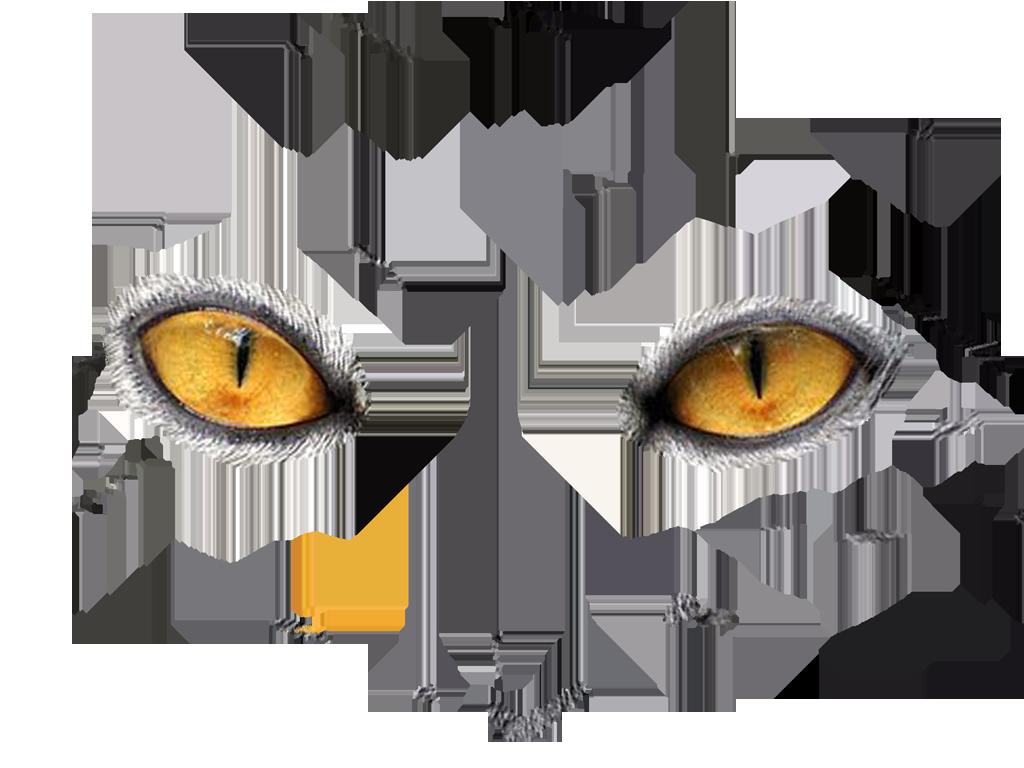 Eye twelve isolated stock. Eyeballs clipart transparent background