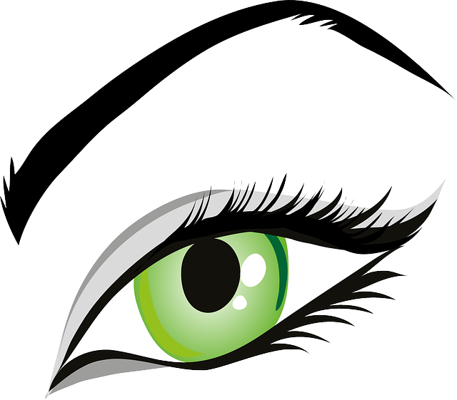 The shape of eyebrows. Eyelashes clipart perfect eyebrow