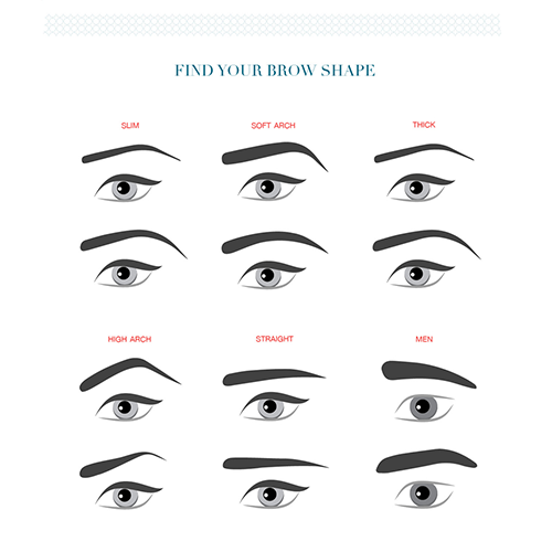 Eyebrow clipart arched. Shape for your face