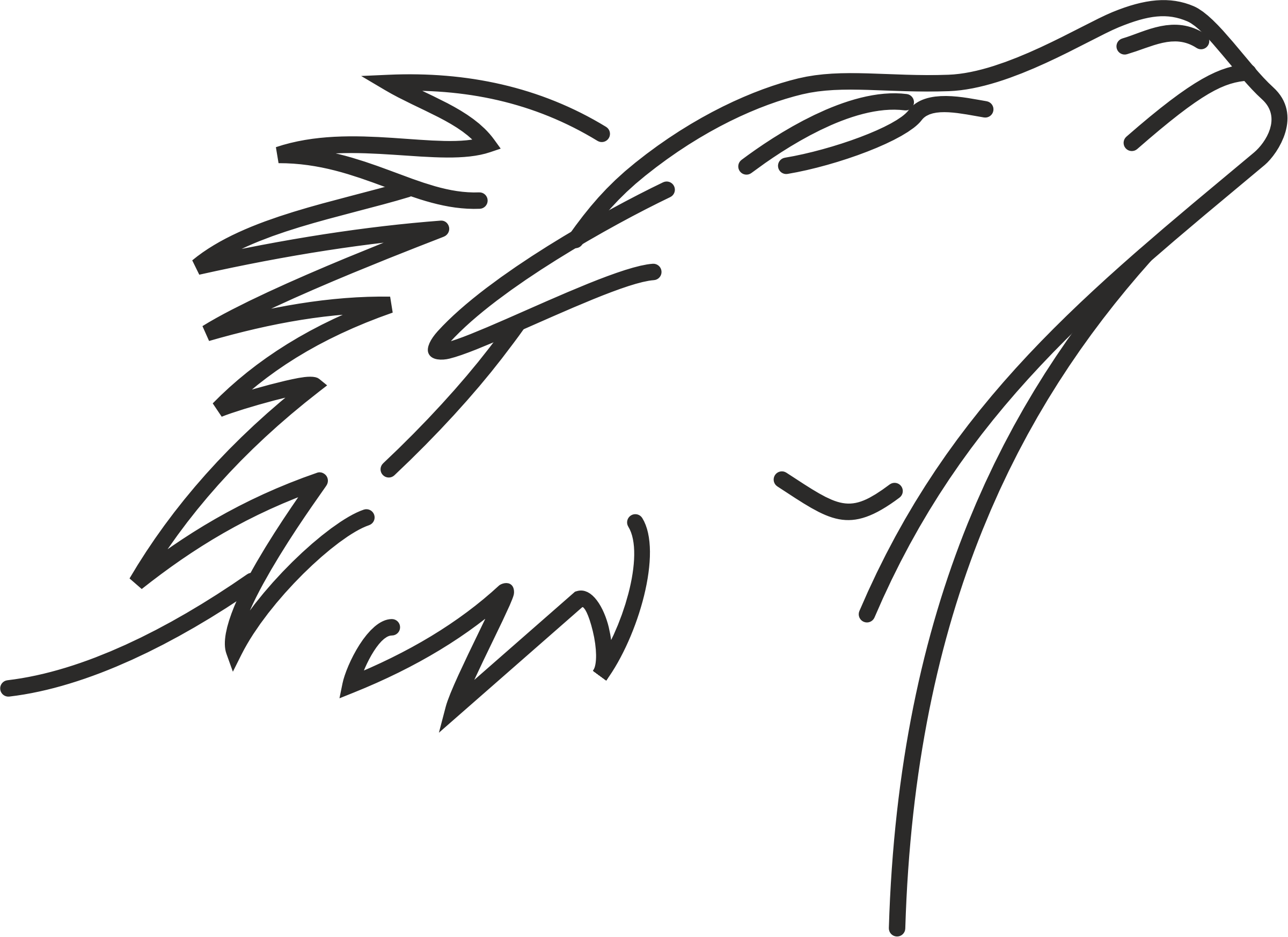 Lion line big image. Eyebrow clipart drawing
