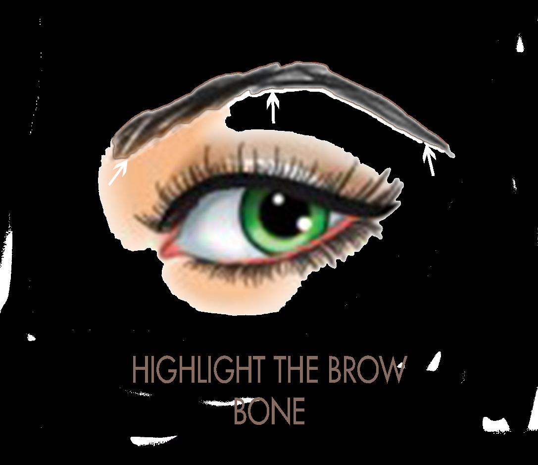 Eyebrow clipart eyebrow pencil. Xhiaarrieta how to achieve